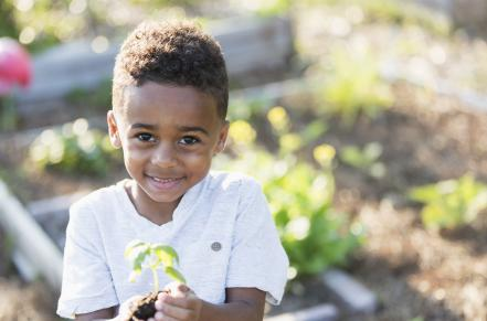 little boy in garden with a plant